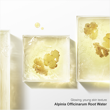 Alpinia Officinarum Root Water Ginger Water