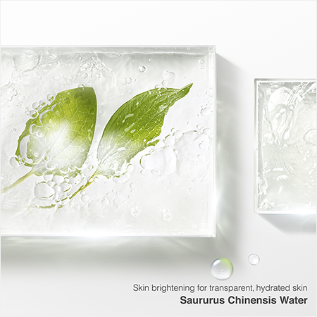 Skin brightening for transparent, hydrated skin Saururus Chinensis Water