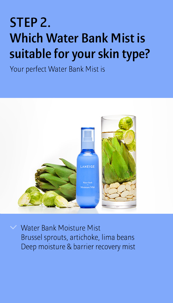 water bank moisture mist 150ml image